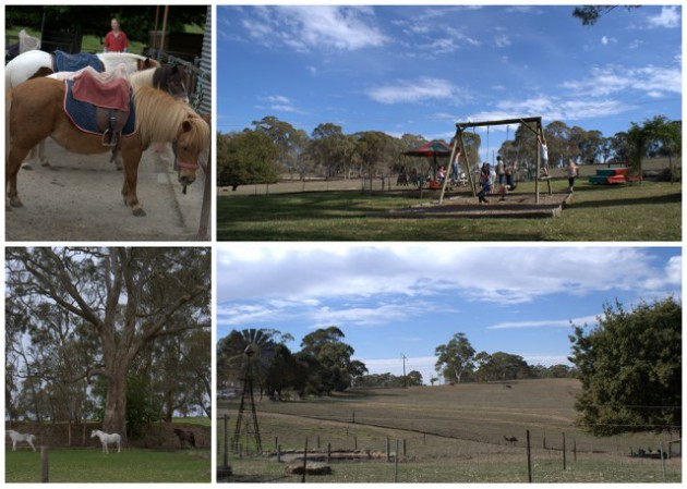 Four Oaks Farm