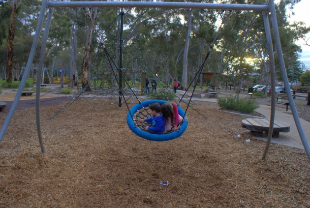 Hazelwood Park Playground basket swing