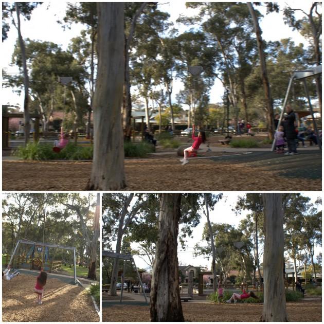 Hazelwood Park Playground flying fox