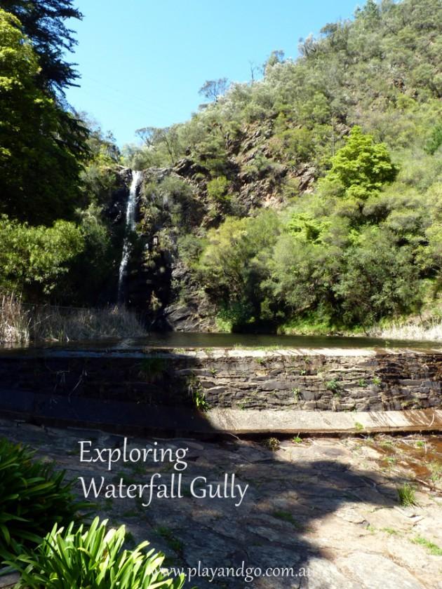 Waterfall-Gully-5