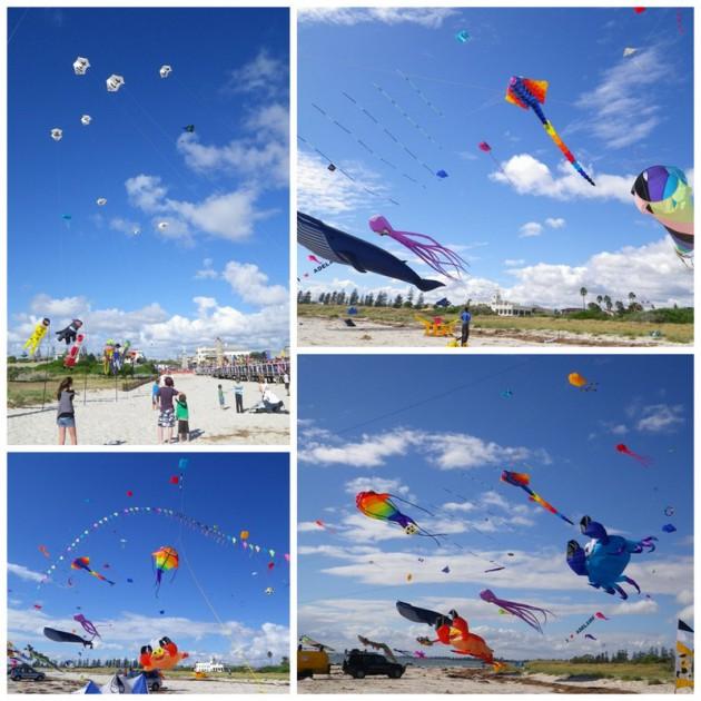 adel-kire-festival-2012-pics