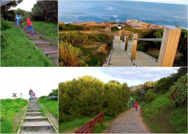 5-Pt Elliot Horseshoe Bay steps