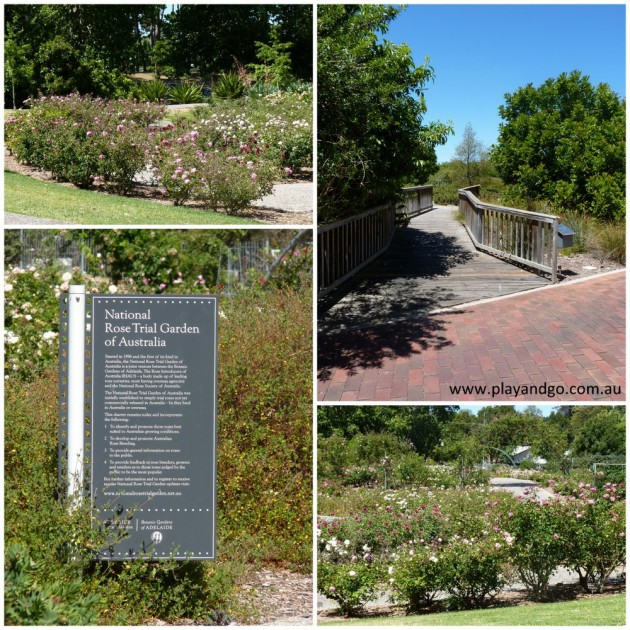 botanic-garden-2013l