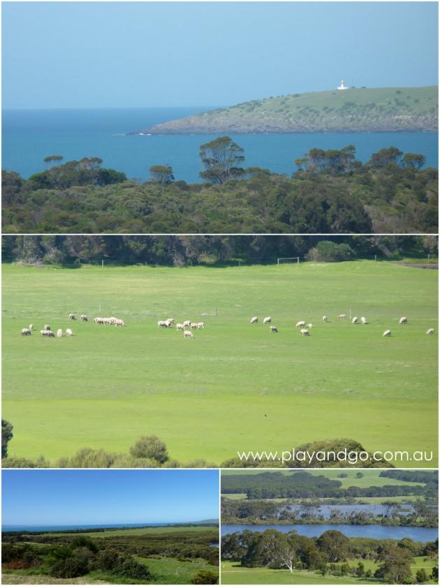 Kangaroo Island 4