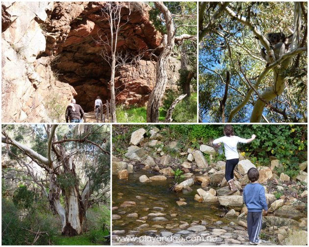 Morialta Falls Collage