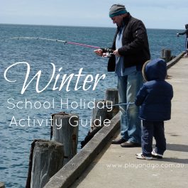 Winter Holiday Guide 2015