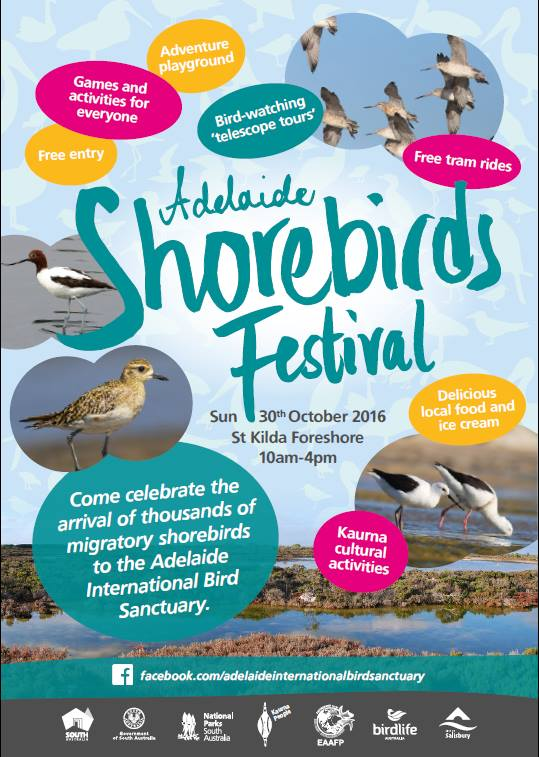 Adelaide Shorebirds Festival