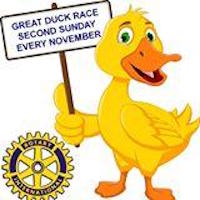 The Great Duck Race | Strathalbyn | 13 Nov 2016 - Play and Go  Duck Race