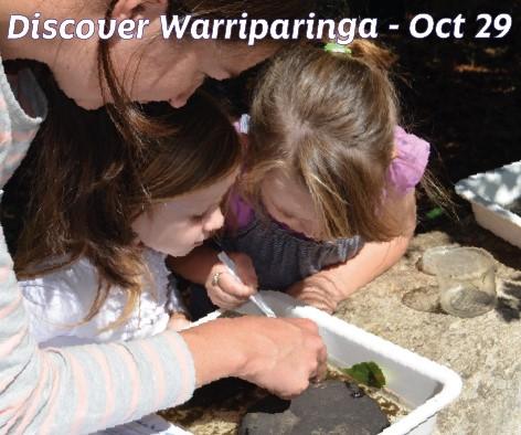 thumbnail_discoverycircle-bioblitz-at-warriparinga-3