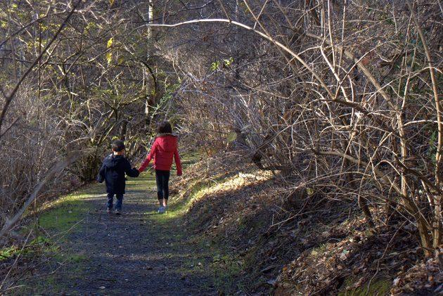 Mt Lofty Botanic Gardens children