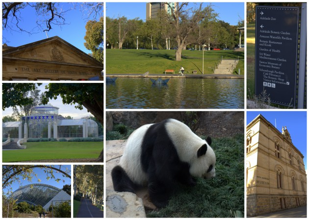Adelaide's Top Tourist Attractions for Families