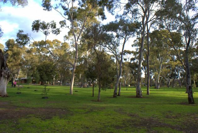 Hazelwood Park Playground surrounds