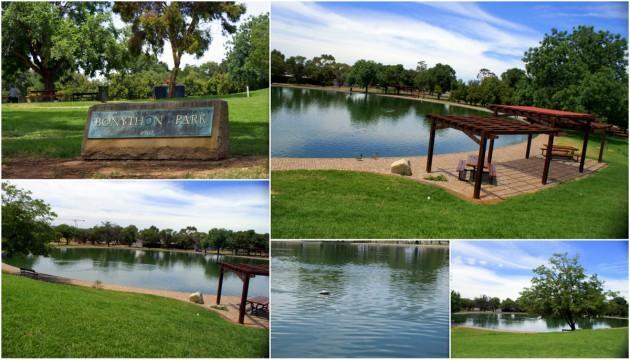 2012-11-25 Bonython Park Duck Pond