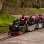 MV Morphett Vale Rail