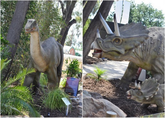 Heidi Dinosaur at Zoo photos collage 3
