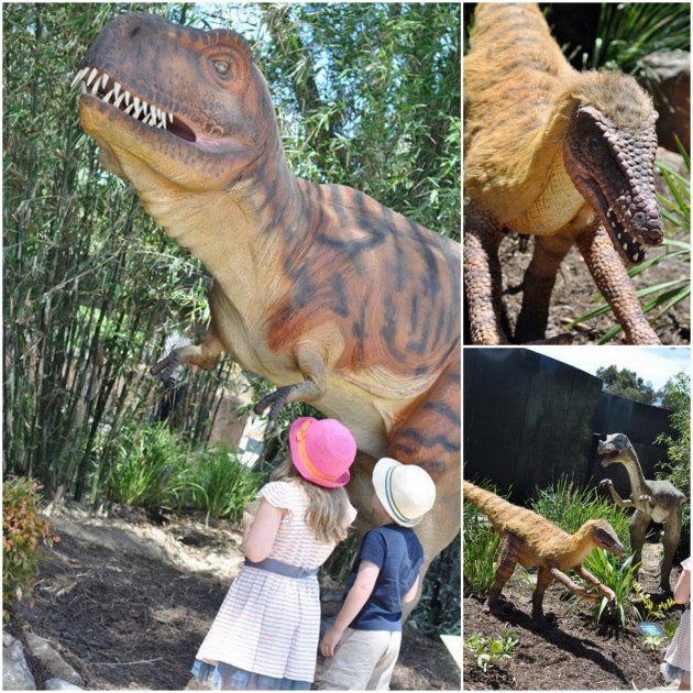 Dinosaur at Zoo photos collage