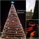 Victoria-Square-xmas-tree-