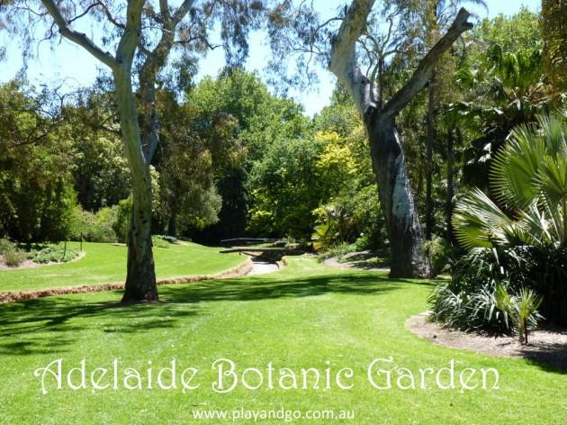botanic garden Adelaide Botanic Gardens