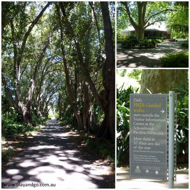 botanic-garden-2013f