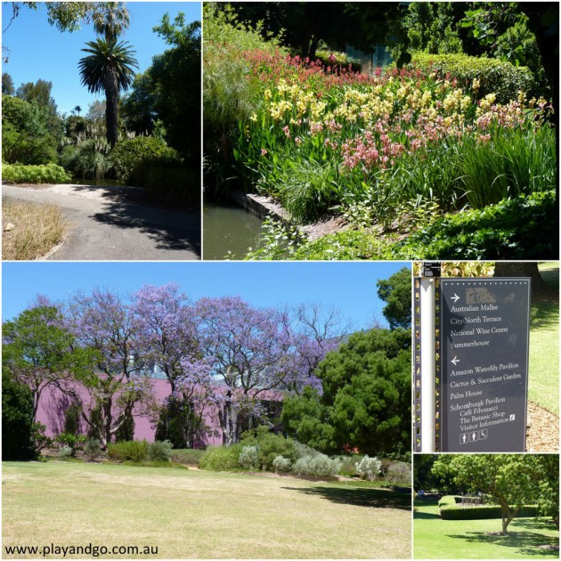 botanic-garden-2013h