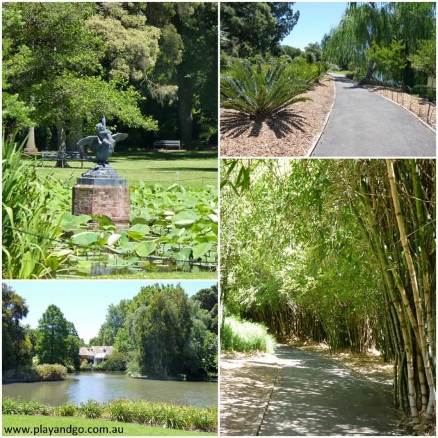 botanic-garden-2013k