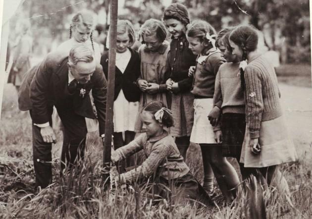 circa 1950s Tree planting Brighton Parade