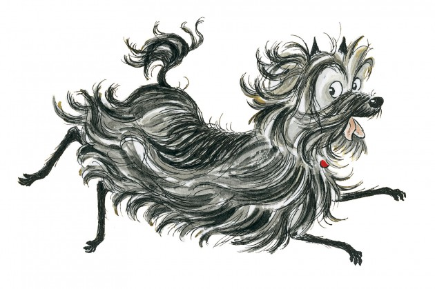 hairy-maclary-lynley-dodd-image