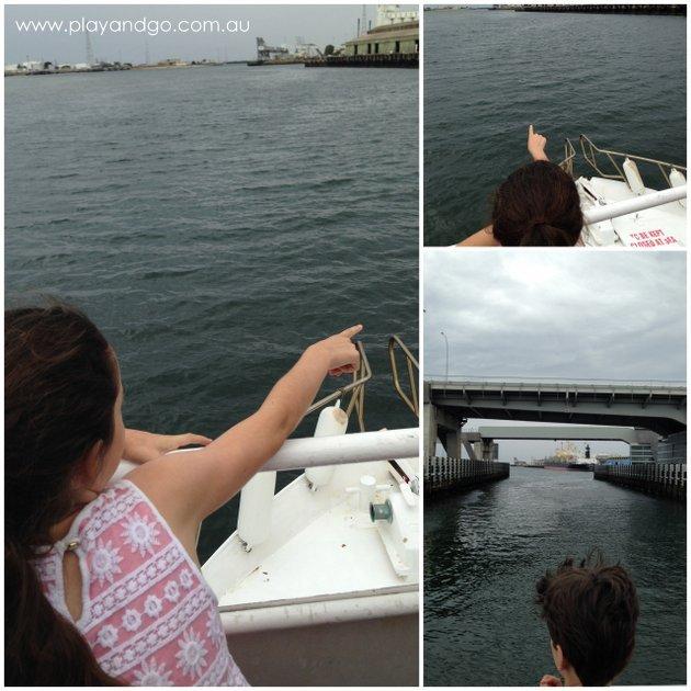 port-dolphin-cruise3
