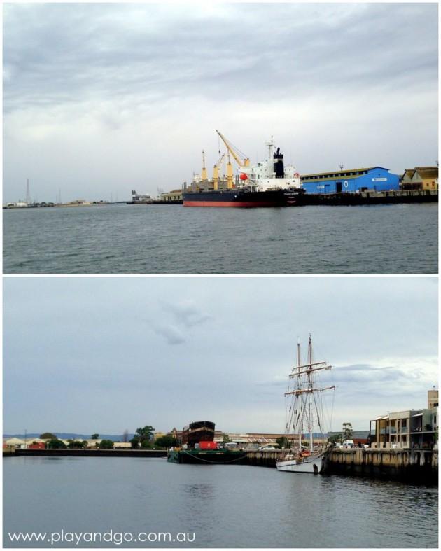 port-dolphin-cruise8a