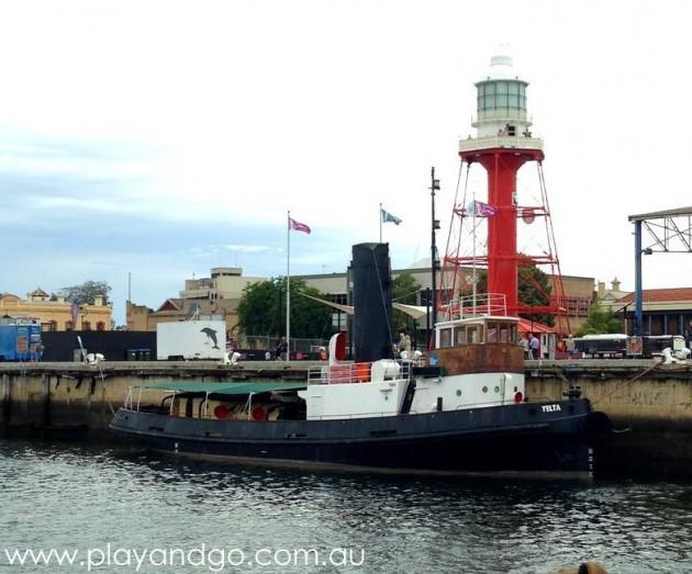 port-dolphin-cruise8b