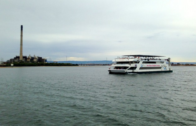 port-dolphin-cruise9