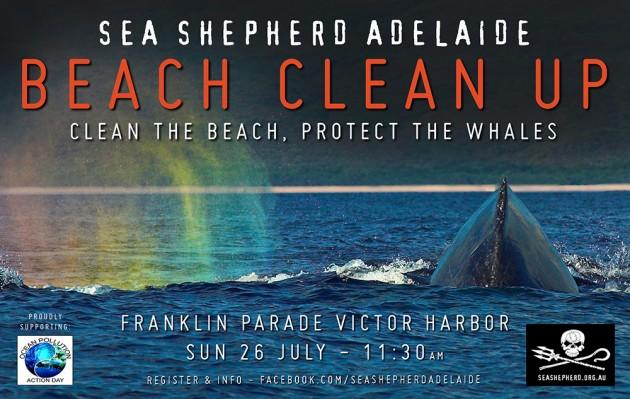BeachClean-VH-july2015