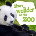 Adelaide Zoo Monarto Zoo