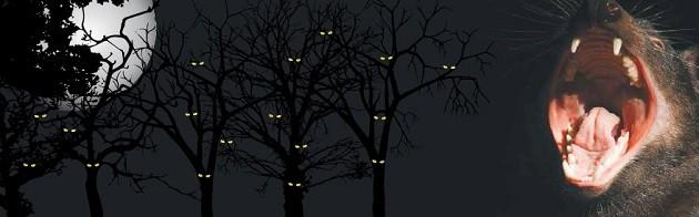 93740-Cleland-Halloween-Website-Image-FIN