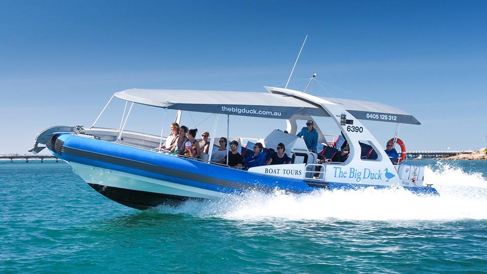 The Big Duck Boat Tours Victor Harbor Review What S