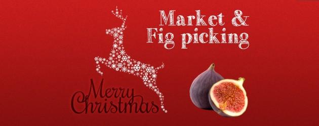 Glen Ewin Markets
