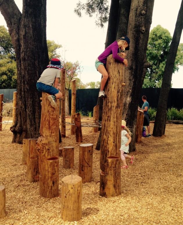 Zoo climbing