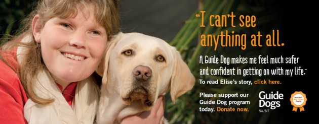 Guide Dog Discovery Centre