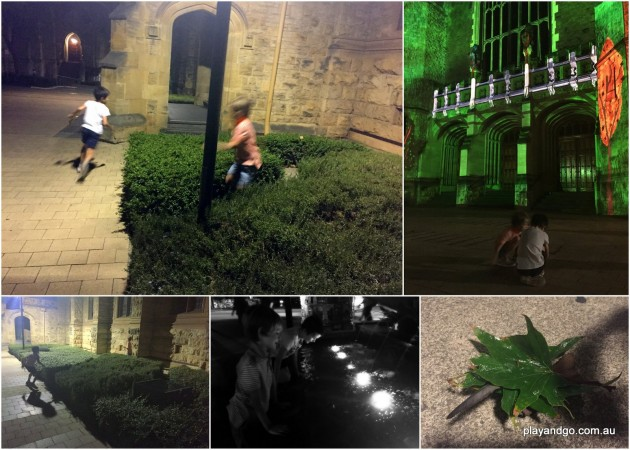 Fringe Illuminations nature play
