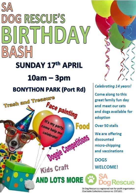 dog rescue birthday bash