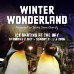 winter wonderland 2016 ice skating glenelg