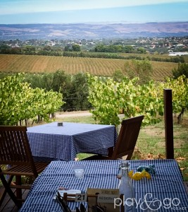 Why we love living in Adelaide - the vineyards