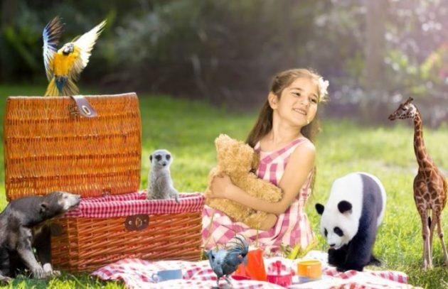 Teddy Bears Picnic Adelaide Zoo