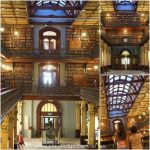 state library mortlock library