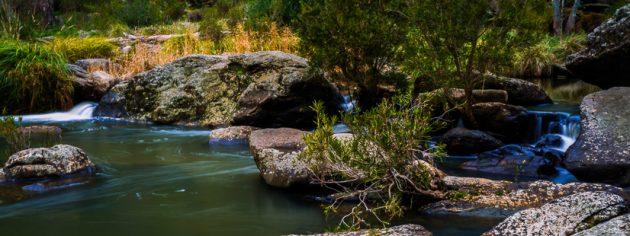 Onkaparinga River Parks Family Day