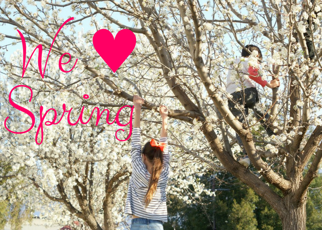We love Spring things to do in Adelaide
