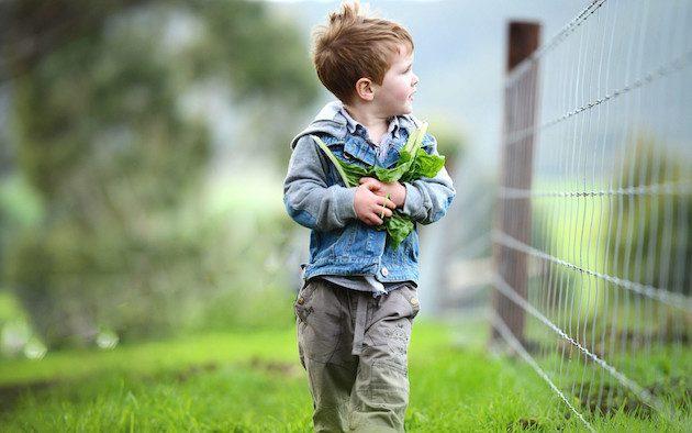 spring-farm-fair-1080x675