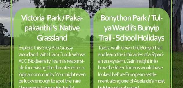 adelaide-park-lands-biodiversity-walks