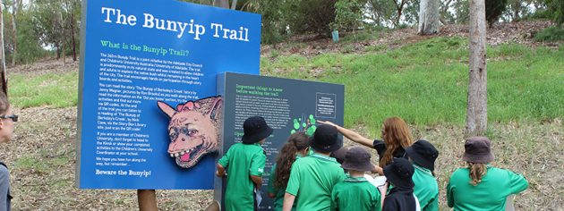 Bunyip Trail