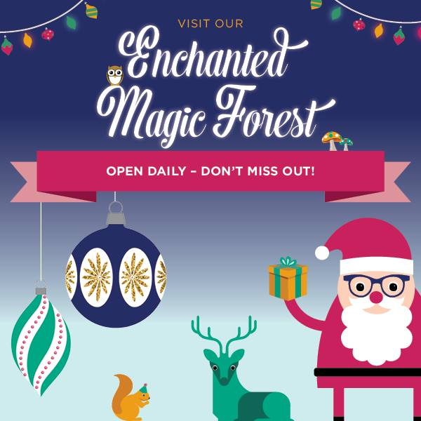 Enchanted Magic Forest